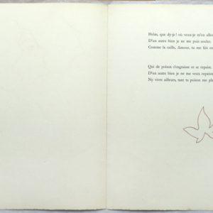 Henri Matisse Jaime Marie Poem