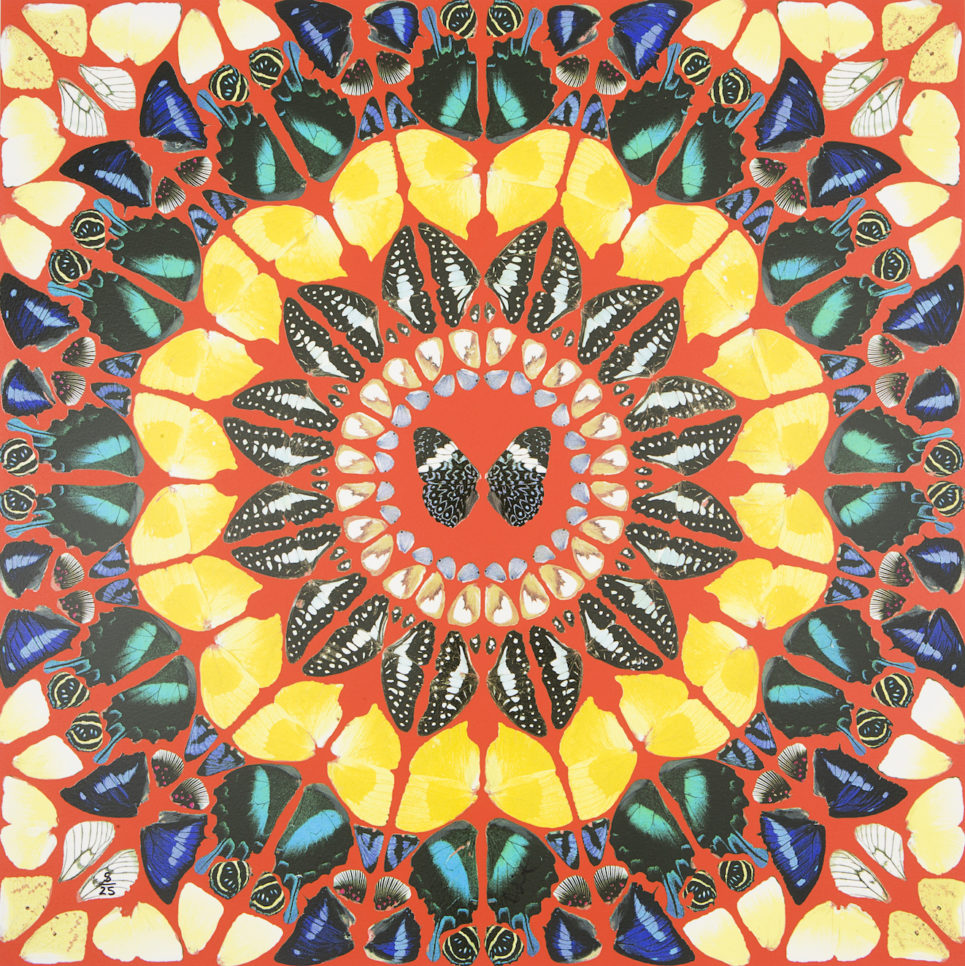 Damien Hirst - Psalm: Benedicam Domino