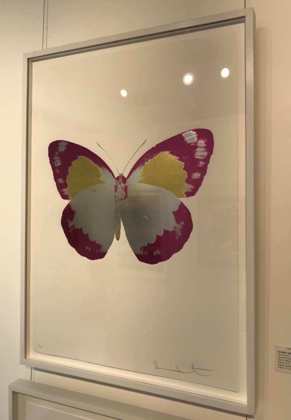 damien-hirst-the-souls-ii-silver-gloss-fuchsia-pink-oriental-gold-framed