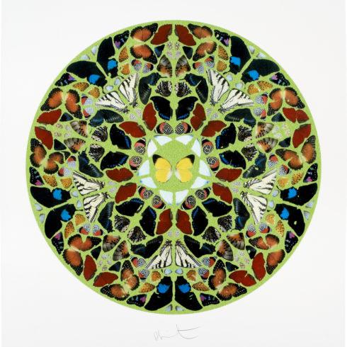 Damien Hirst - Psalm: Domini est terra