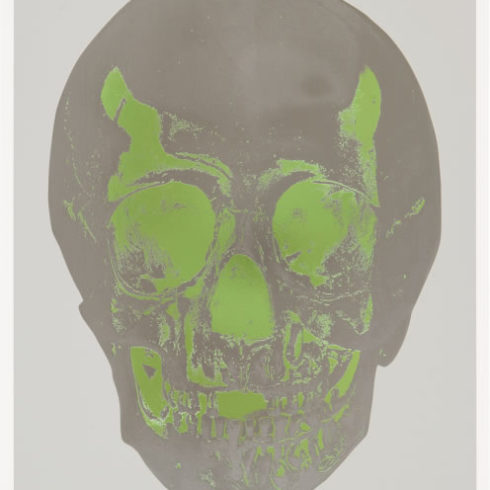 Damien Hirst - Till Death Do Us Part (Grey/Green)