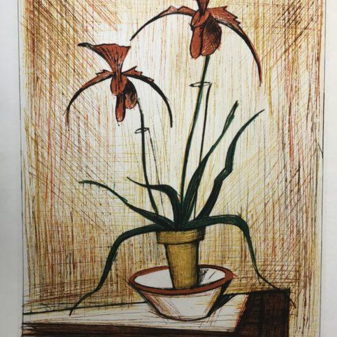 Bernard Buffet - Orchidees
