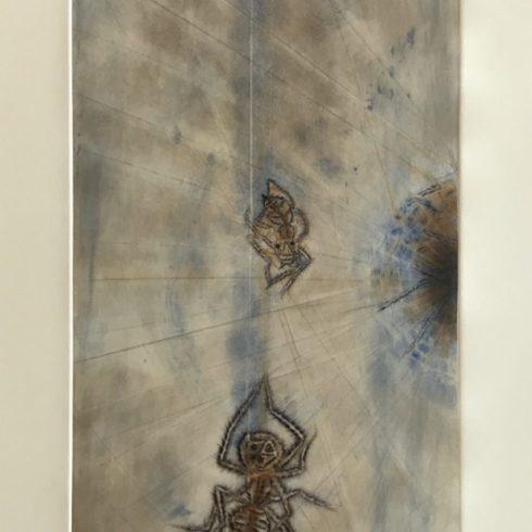 Francisco Toledo - Spiders